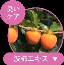 臭いケア 渋柿エキス